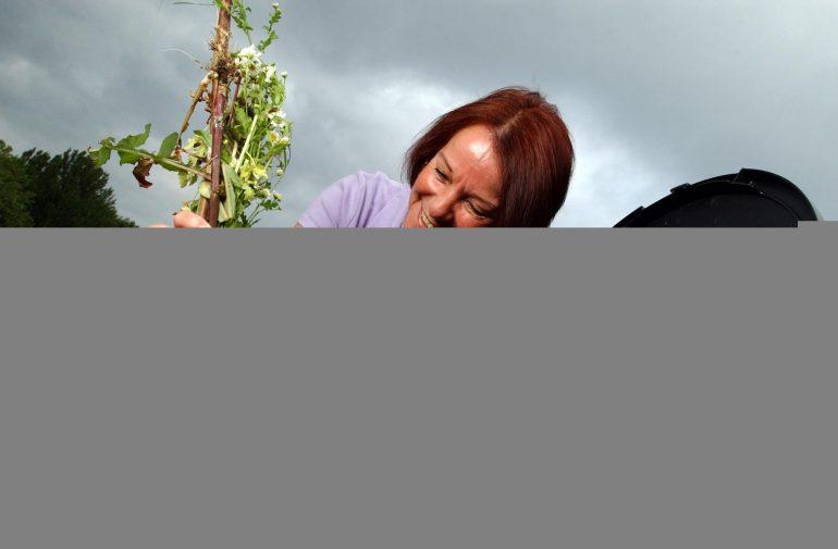 Lady putting rubbish in a compost bin