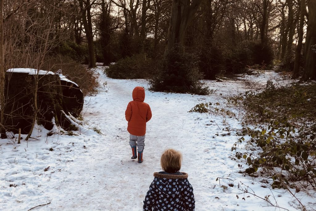 Childwall Woods in the snow